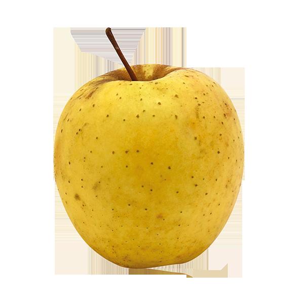POMME golden-delicious