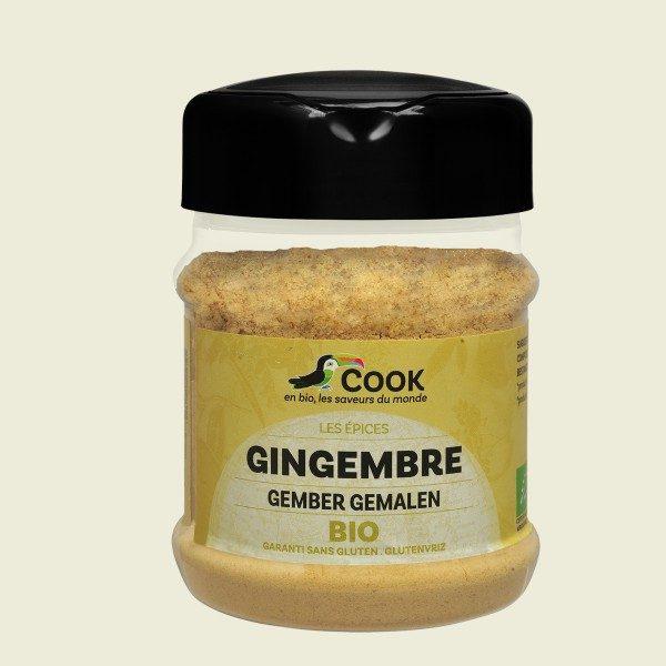 gingembre-poudre80