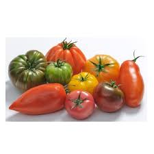 TOMATE ANCIENNE 600X600